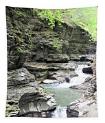 Water Flowing Through The Gorge Tapestry