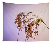 Drooping Teddy Bear Grass Tapestry