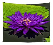 Water Lily 15-2 Tapestry