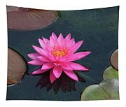 Water Lily - Afternoon Delight Tapestry