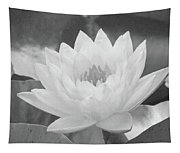Water Lily - Burnin' Love 16 - Bw - Water Paper Tapestry