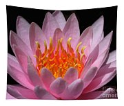 Water Lily On Fire Tapestry