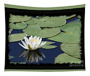 Water Lily With Black Border Tapestry