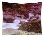 Water Winding Through Rocks Tapestry