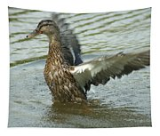 Watercovered Wingflapper Tapestry
