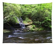 Waterfall And Mountain Creek Tapestry