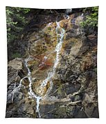 Waterfall At Lake Willoughby  Tapestry
