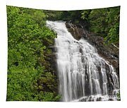 Waterfall Closeup Tapestry