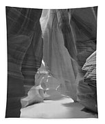 Waterfall Of Light - Black And White Tapestry
