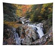 Waterfall Off Blue Ridge Parkway Tapestry