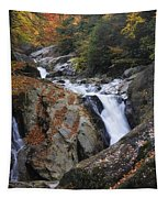 Waterfall On West Fork French Broad River Tapestry
