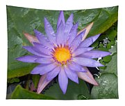 Waterlily Tapestry