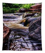 Wausau Whitewater Course Side View Tapestry