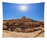 Weather Worn Rock Bowl Tapestry