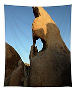 Weathered Rock Tapestry