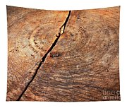Weathered Wood On Old Tree Tapestry