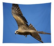 Wedgetail Eagle Flight Tapestry
