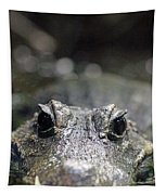 West African Dwarf Crocodile - Captive 01 Tapestry