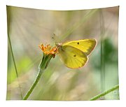 Wester Sulfur Butterfly Tapestry