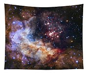 Westerlund 2 - Hubble 25th Anniversary Image Tapestry