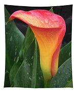 Wet Calla Lily Tapestry