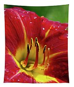 Wet Lily Tapestry