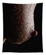 Wet Nip Tapestry