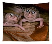 We've Got A Secret - Smiling Leopard Geckos Tapestry