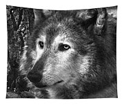 What Is A Wolf Thinking Tapestry