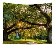 When I Dream... Tapestry