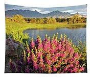 When The Rains Come In The Desert So Do The Blooms Tapestry