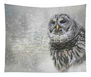 When Winter Calls Owl Art Tapestry