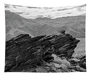 Where Andreas Meets Murray Bw 1 Tapestry