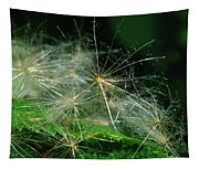 Whispy Seeds Tapestry