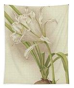 White Amaryllis   Ismene Andreana Tapestry
