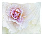 White And Pink Ornamental Kale Tapestry