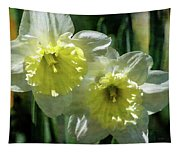 White And Yellow Daffodil 8887 Idp_2 Tapestry