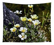 White And Yellow Poppies 1 Tapestry