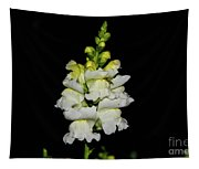 White And Yellow Snapdragon Tapestry
