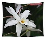 White Beauty Dove Tapestry
