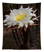 White Cactus Fower Tapestry