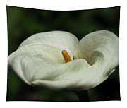 White Calla Lilly  Tapestry
