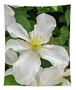 White Clematis 0808 Tapestry