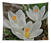 White Croci Tapestry