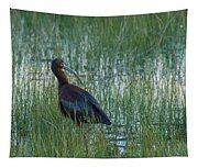 White-faced Ibis In Idaho Tapestry