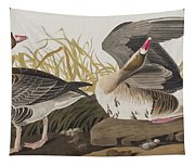 White-fronted Goose Tapestry