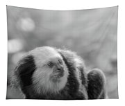 White-headed Marmoset Tapestry
