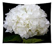 White Hydrangea Tapestry