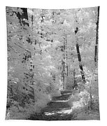 White Path Tapestry