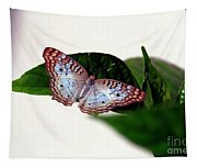 White Peacock Butterfly 2 Tapestry